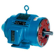 Leeson Motors Motor Electric Motors - 20HP, 230/460V, 1780RPM, TENV, Rigid Mount, 1.0 S.F.