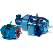 Leeson Motors 3-Phase Inverter Duty Motor 1.5HP,1170RPM,284,TEBC,3PH,60HZ,40C,1.15SF,Rigid