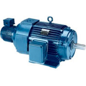 Leeson Motors - 75HP, 230/460V, 1185RPM, TEBC, Rigid C Mount, 1.0 S.F.