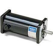 Leeson Motors DC Motor-.16 -.33HP, 12-24V, 1800-3900RPM, TENV, Sq. flange
