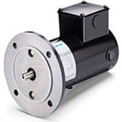 Leeson Motors Metric DC Motor-.18 KW, 24V, 3000RPM, IP54, B5
