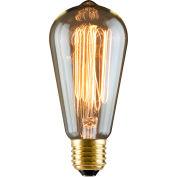 Luminance L4099 60W MB S21 Reprod Amber Bulb 120V
