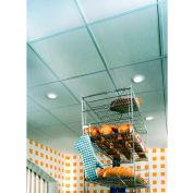 """USG 3270 Sheetrock™ Ceiling Panels, Gypsum Panel, White, 48"""" x 24"""""""
