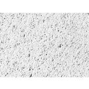 "USG 418 Frost™ ClimaPlus™ Ceiling Panels, Mineral Fiber, White, 24"" x 24"""