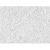 "USG 76575 Eclipse™ ClimaPlus™ Ceiling Panels, Mineral Fiber, White, 24"" x 24"""