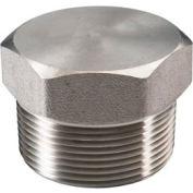 "Ss 304 Barstock Hex Head Plug 1/2"" Npt Male - Pkg Qty 50"