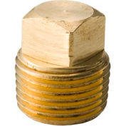 "Brass Yellow Barstock 3/8"" Hex Head Plug Npt Male - Pkg Qty 50"