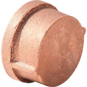 1/2 In. Lead Free Brass Cap - FNPT - 125 PSI - Import