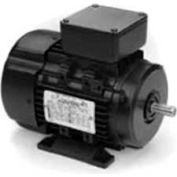 Marathon Motors Metric Motor, R383, 63T34FH5504, 1/3-.25HP, 3600RPM, 230/460V, 3PH,   63 FR, TEFC