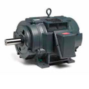 Marathon Motors Oil Well Pump Motor, Y215, 15HP, 230/460/796V, 1200RPM, 3PH, 284T FR, DP