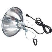 Little Giant Clear Bulb 170031, 250 Watt - Pkg Qty 12