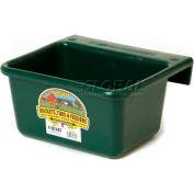Little Giant Mini Feeder Mf6green, Duraflex Plastic, 6 Qt., Green - Pkg Qty 6