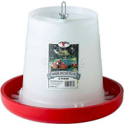 Little Giant Hanging Poultry Feeder Phf11, Holds 11 Lbs. Of Feed - Pkg Qty 6