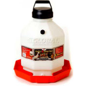 Little Giant Automatic Poultry Waterer Ppf5, Heavy-Duty Translucent Plastic, 5 Gal. - Pkg Qty 2