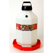 Little Giant Automatic Poultry Waterer PPF7, Heavy-Duty Translucent Plastic, 7 Gal.