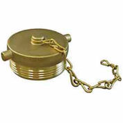 Fire Hose Hose Plug - 1-1/2 In. NH - Brass