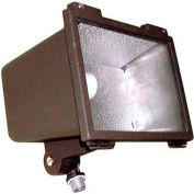 Morris Products 71057, Small Floodlight 100W MH 120V Quad 120/208/240/277V