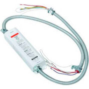 Morris Products 72901, Compact Fluorescent Emergency Lighting Ballasts 650 Lumens 2 Pin