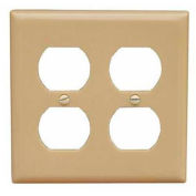 Morris Products 81420, Lexan Wall Plates 2 Gang Duplex Receptacle Ivory