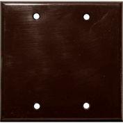Morris Products 81522, Lexan Wall Plates 2 Gang Blank Brown