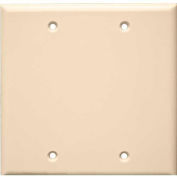 Morris Products 81523, Lexan Wall Plates 2 Gang Blank Almond