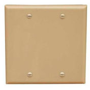 Morris Products 81745, Lexan Wall Plates 2 Gang Midsize Blank Ivory