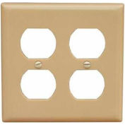 Morris Products 81760, Lexan Wall Plates 2 Gang Midsize Duplex Receptacle Ivory