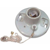 "Morris Products 82113, Porcelain Receptacle Pullchain 6"" Leads"