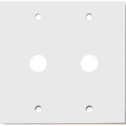 "Morris Products 83477, Painted Steel Wall Plates 2 Gang Cable .406"" Hole Dia. White"