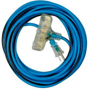 Morris Products 89309, Cold Weather Extension Cord 12/3 25ft