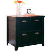 Martin Furniture Black 2-Drawer Lateral File Cabinet - kathy ireland Home Series