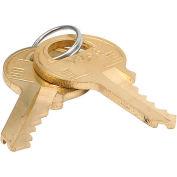 Master Lock® No. K6000 Control Key For ProSeries® 5-Pin Cylinder Padlocks