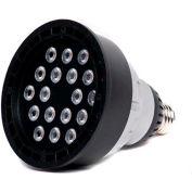 Moon Visions LED MV120V R38 22W 5000K FL 40° 22W 120V Cool White LED Flood