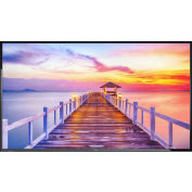 "NEC Display 42"" LED Backlit Display with Integrated Tuner"