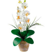 Nearly Natural Phalaenopsis Silk Orchid Flower Arrangement, Cream