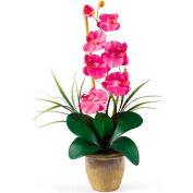 Nearly Natural Phalaenopsis Silk Orchid Flower Arrangement, Dark Pink
