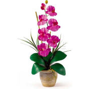 Nearly Natural Phalaenopsis Silk Orchid Flower Arrangement, Orchid