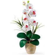 Nearly Natural Phalaenopsis Silk Orchid Flower Arrangement, White