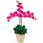 Nearly Natural Triple Phalaenopsis Silk Orchid Flower Arrangement, Beauty