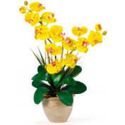 Nearly Natural Double Phalaenopsis Silk Orchid Flower Arrangement, Yellow