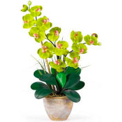Nearly Natural Double Phalaenopsis Silk Orchid Flower Arrangement, Green