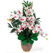 Nearly Natural Double Phal/Dendrobium Silk Flower Arrangement, White/White