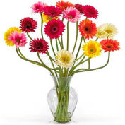 Nearly Natural Gerber Daisy Liquid Illusion Silk Flower Arrangement, Assorted