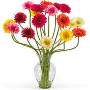 Nearly Natural Gerber Daisy Liquid Illusion Silk Flower Arrangement, Assorted