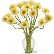 Nearly Natural Gerber Daisy Liquid Illusion Silk Flower Arrangement, Cream