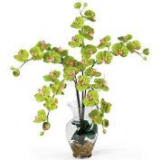 Nearly Natural Phalaenopsis Liquid Illusion Silk Flower Arrangement, Green