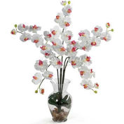 Nearly Natural Phalaenopsis Liquid Illusion Silk Flower Arrangement, White