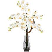 Nearly Natural Phalaenopsis with Vase Silk Flower Arrangement, Cream