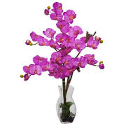 Nearly Natural Phalaenopsis with Vase Silk Flower Arrangement, Orchid