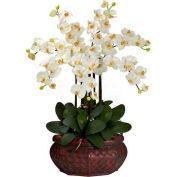 Nearly Natural Large Phalaenopsis Silk Flower Arrangement, Cream